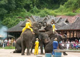 Jinghong Wild Elephant Valley